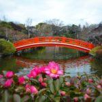 京都のパワースポット 神泉苑