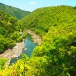 Arashiyama Bamboo Grove  嵐山の竹林