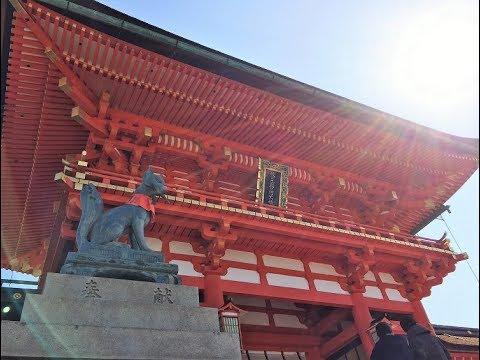 行くぜ京都!移動はバスで京都観光 2018 Traveler's guide to Kyoto 【Fushimi-Inari teahouse ,Sennyū-ji 】