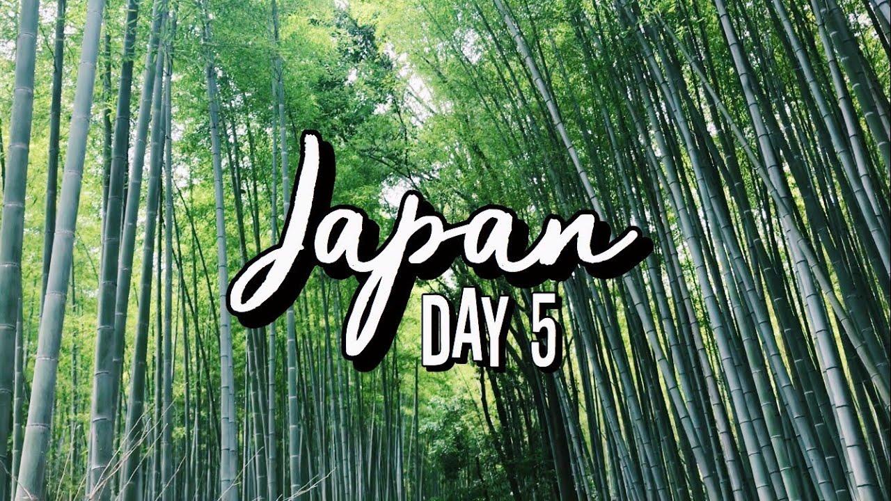 Japan Travel Vlog – Day 5/Kyoto/Arashiyama/Kinkaku-ji/Nara/Kobe Harborland