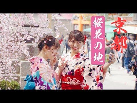 Kyoto 2018 Travel video I Sony a7 R III