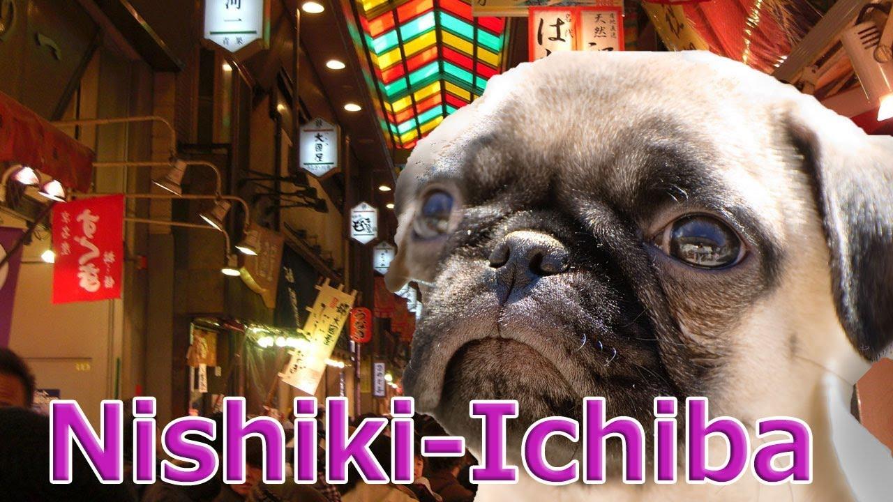 [Japan]walk and eat in Kyoto,Nishiki-Ichiba Market!with Pug dog