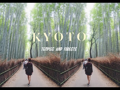 TRAVEL VLOG • Kyoto Day 1 | Golden Temple and Arashiyama 🎋Grove | wendy in the wild