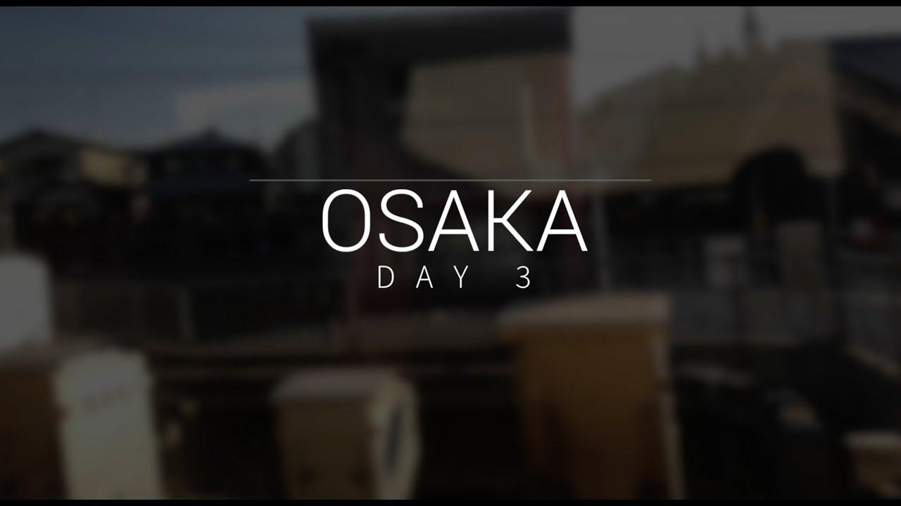[일본vlog] 오사카/교토 Day3&4 (Osaka/Kyoto, Japan travel vlog)