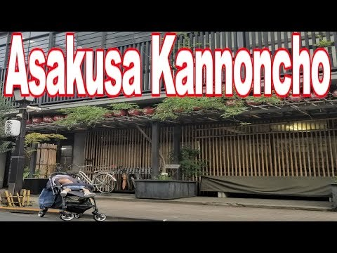 Guide Japan Asakusa Kannoncho 浅草寺⇒浅草観音裏  ベビーと散歩 TOKYO JAPAN STREET VIEW【4K】