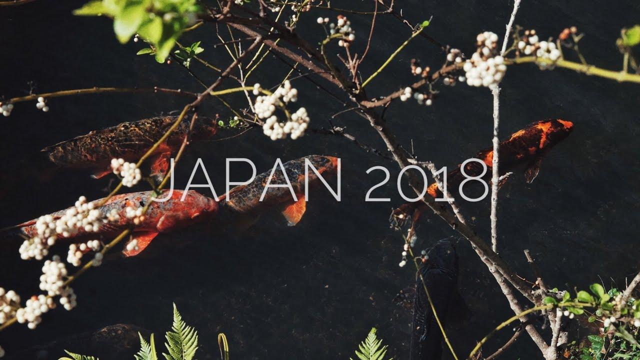 Iphone 8 plus Cinematic Travel Video Japan 2018 [ Kyoto – Osaka – Tokyo ]