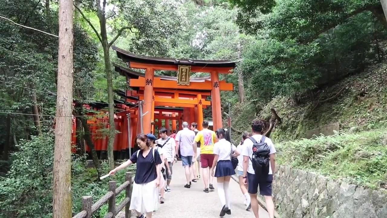 Tham quan cổng Fushimi Inari tại Kyoto Nhật Bản | Phạm Minh Tuấn