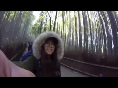 Traveling to Japan 2017 🇯🇵 Tokyo, Kusatsu Onsen, Mount Fuji, Kyoto, Osaka
