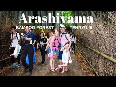 Arashiyama Bamboo Grove tour in Kyoto, Japan + AMAZING Sushi