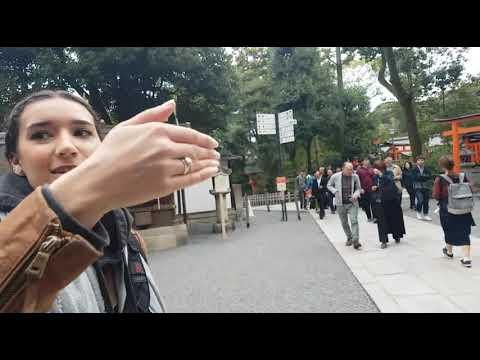 Kyoto Travel Vlog: Fushimi Shrine