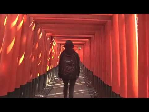 Osaka & Kyoto  // Cinematic Travel Video