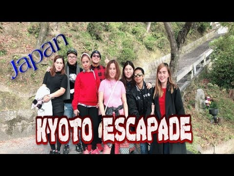 osaka kyoto travel,kiyomizudera to kinkakuji,fushimi inari taisha shrine senbon torii