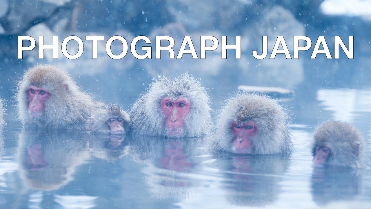 PHOTOGRAPH JAPAN! Tokyo, Kyoto, Nagano Japanese Snow Monkeys and more