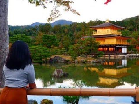 3 Day Trip around Osaka, Kyoto and Gion