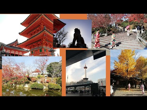 Colors of Kyoto Part 1 | Japan Vlog | Few Tips for Traveling