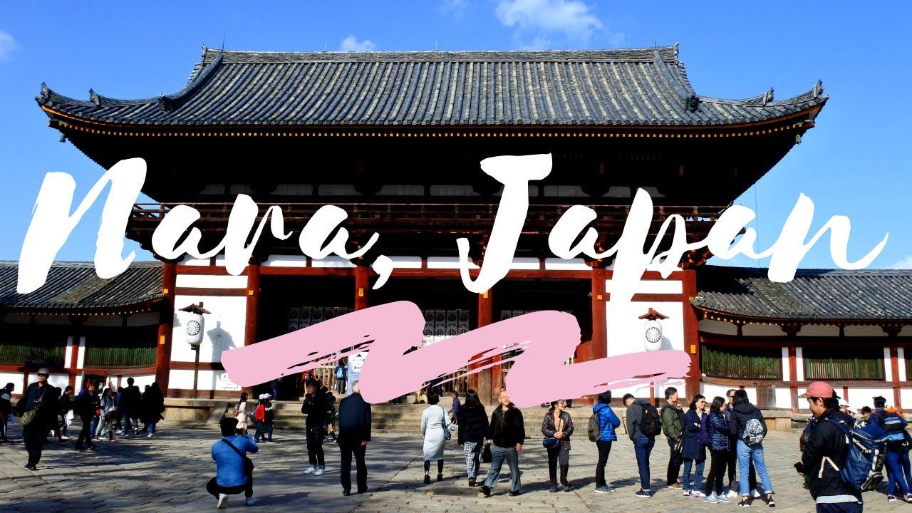 Day Trip to Nara 奈良 | Japan Travel Vlog