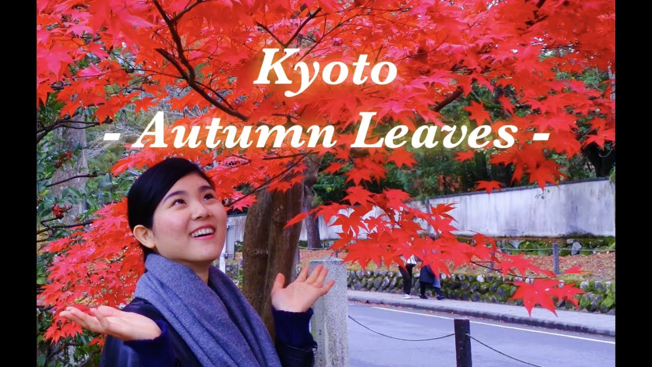 JAPAN TRAVEL – Let's go to Kyoto ② –  | そうだ、京都行こう。#125