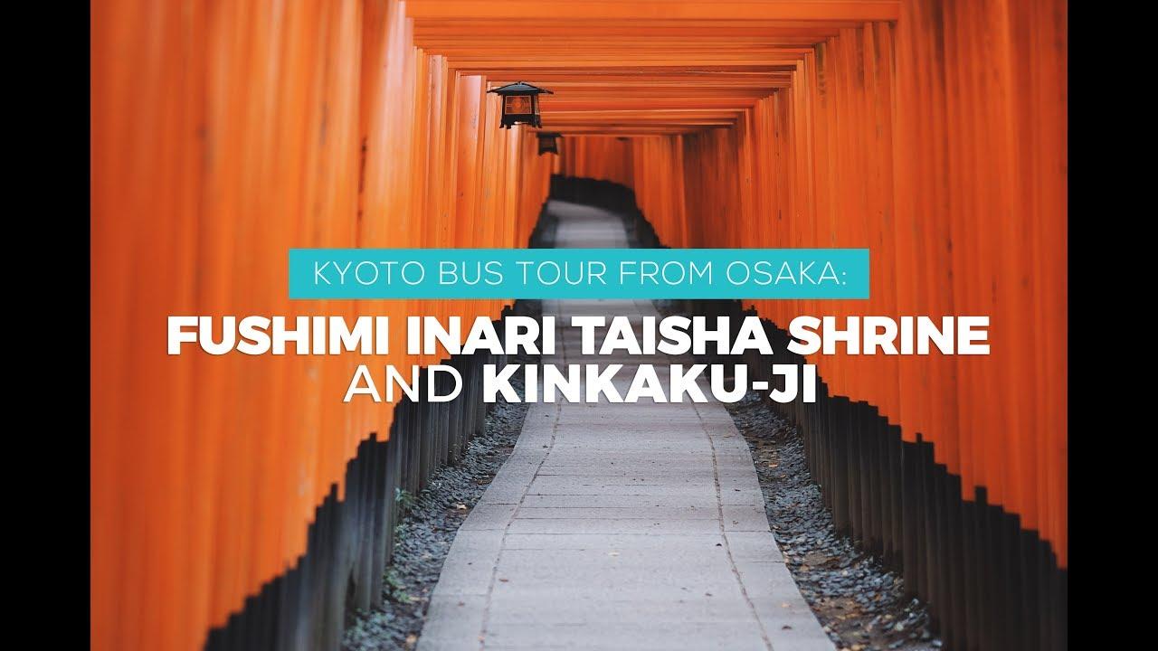 Kyoto Tour: Fushimi Inari Taisha Shrine & Kinkaku-ji
