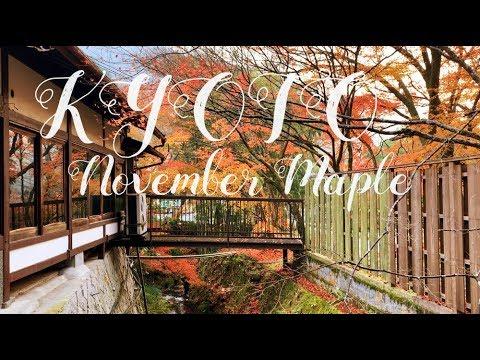 [Travel Vlog] KYOTO maple 11월 교토 단풍놀이 (엽서인줄…)