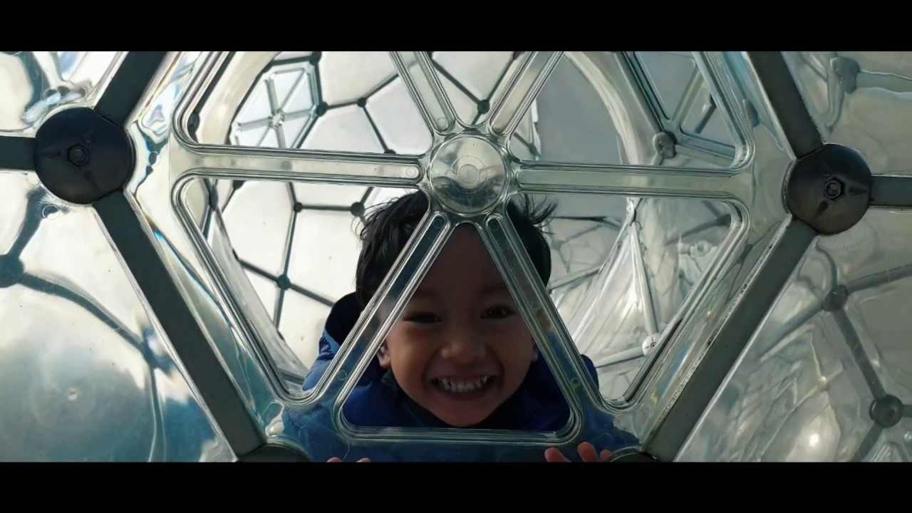 Traveling with kids Japan | Tokyo + Kyoto + Osaka + Nara + Hakone