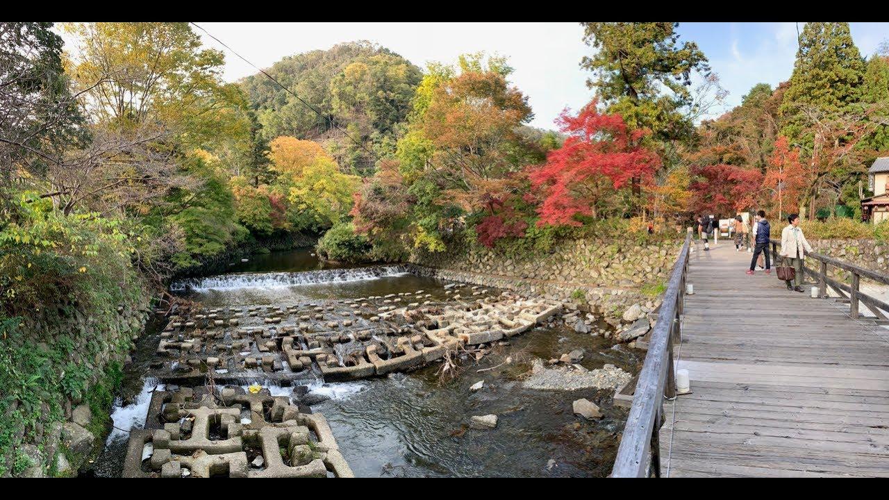 Travels in Japan –  Kyoto 4K