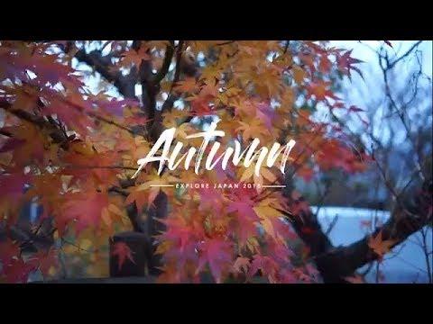 Jalan Jalan ke Jepang musim Autumn Tour Jepang Tokyo Kyoto Hakone