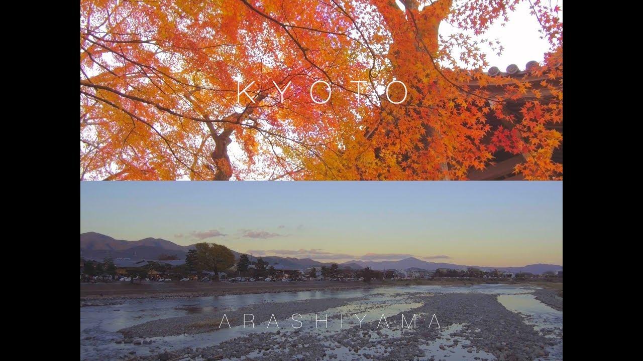 Japan Kyoto Autumn Travel Vlog | Kyoto | Arashiyama 日本 京都 嵐山 [4k Ultra HD]