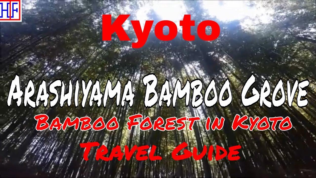 Kyoto | Arashiyama Bamboo Grove (TRAVEL GUIDE) | Episode# 11