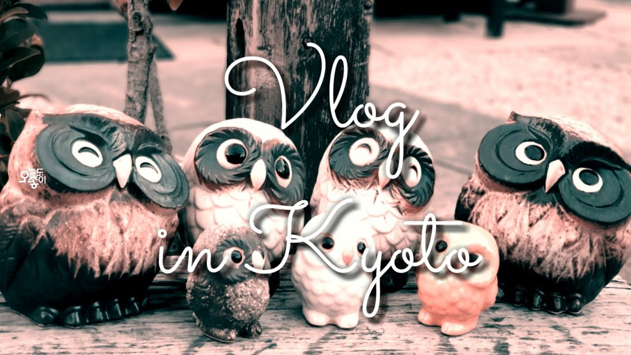"Kyoto Travel Vlog 🇯🇵 교토 여행 브이로그 ""교토의 가을"" 교토 라멘골목ㆍ 아라시야마ㆍ덴류사ㆍ치쿠린ㆍ동양정 (ft.비추 찻집)"