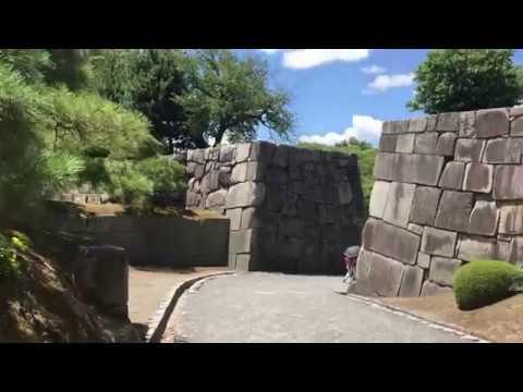 strolling the gardens at Nijo-jo castle in Kyoto