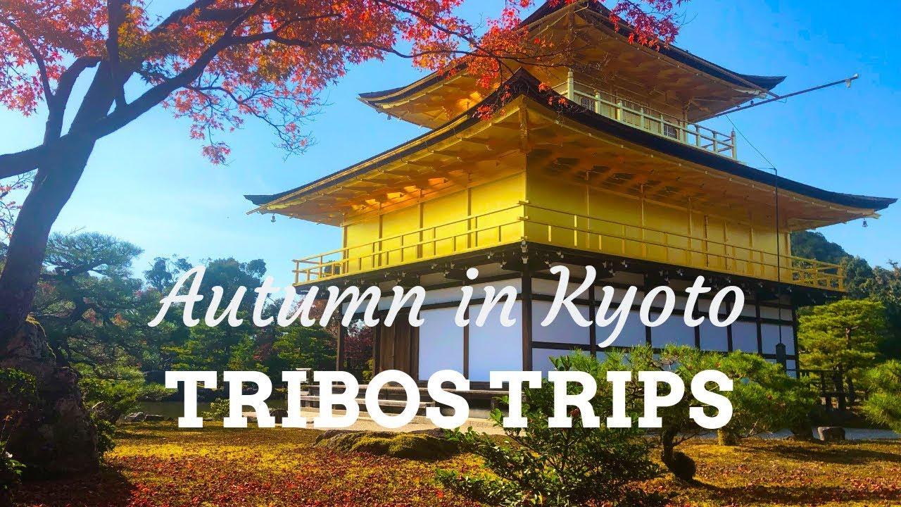 TOUR POR KYOTO NO OUTONO | KYOTO AUTUMN