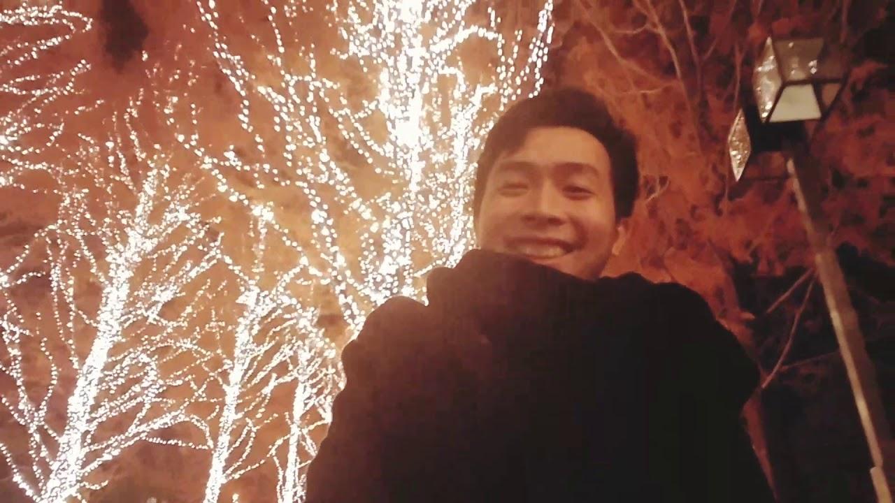 Travel Japan || Rohm Illumination (Kyoto) || Fabulous Tree Lighting by Rohm