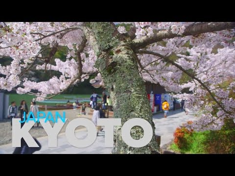 Vacation Clips : Kyoto – Japan (Our Global Travel Community – DreamTrips Recap)