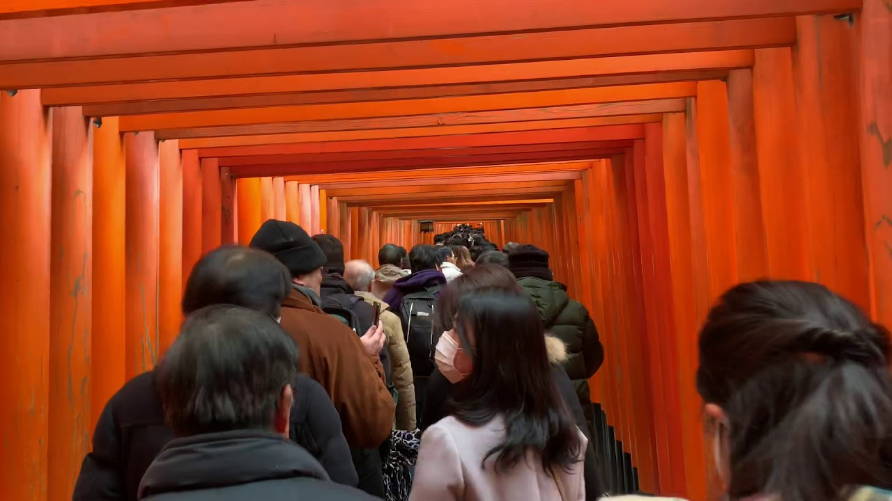 Fushimi Inari Taisha Kyoto Japan Walk tour Hd