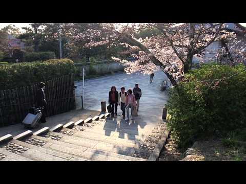 My Travel in Kyoto, Osaka & Awaji Island