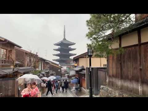 KYOTO highlights! Tour to the ancient captal of incredible beauty.