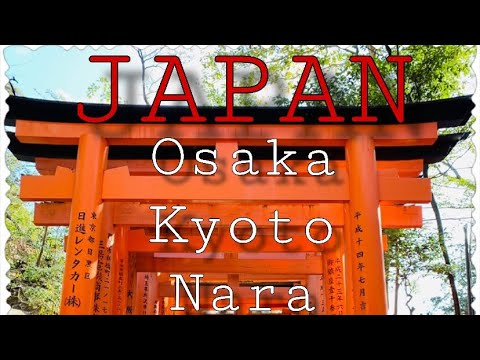 Solo trip to Japan:Osaka|Kyoto|Nara