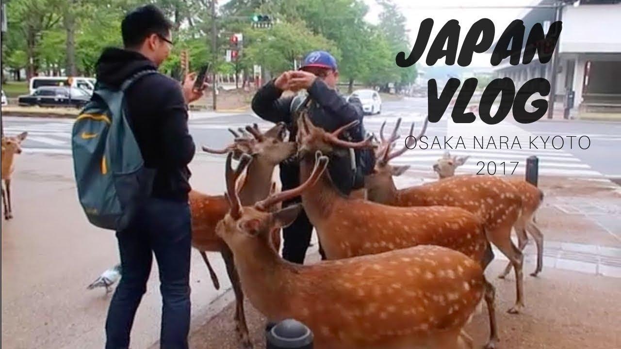 Travel Diary | Japan: Osaka, Nara, Kyoto