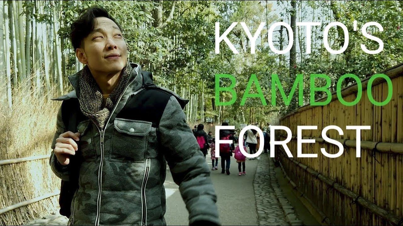 TRAVEL VLOG – Visiting Arashiyama Forest in Kyoto!