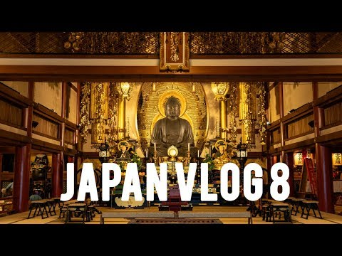 Japan Vlog 8 Nara and Kyoto