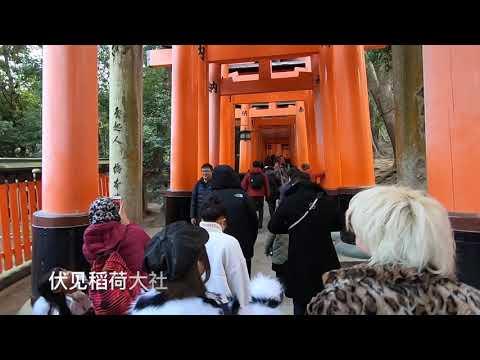 『旅游/旅行/Travel』 京都/京都/ Kyoto  伏见稻荷大社 /伏見稲荷大社 。。。