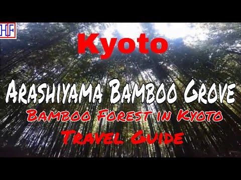 Kyoto   Arashiyama Bamboo Grove (TRAVEL GUIDE)   Episode# 11