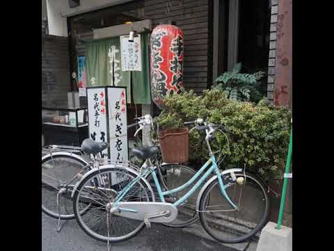 Kyoto City Tour ( by bus, train, walking)