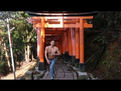 최신 완벽 일본 교토여행 가이드 2일차 Perfect guide for Kyoto,Japan (청수사,기요미즈데라,후시미이나리 ,fushimiinari, kiyomizudera)