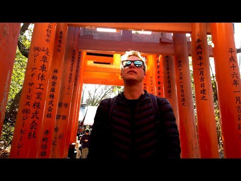 Kyoto Japan Car Tour – Torii Gates, Golden Palace, Bamboo Forest!