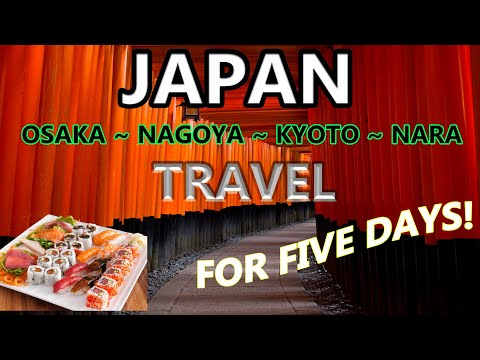 5 DAY ITINERARY JAPAN | LIVING IN NAGOYA – NARA – KYOTO – OSAKA FOR FIVE DAYS | WHAT TO DO?