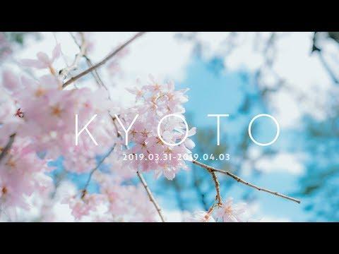 교토를 듣다 | Listen to Kyoto