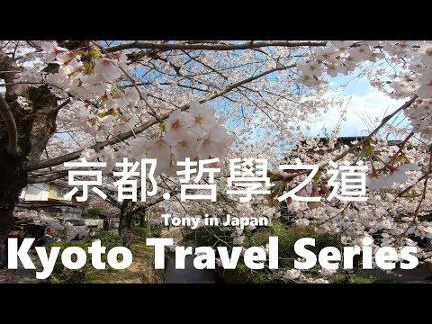 【映像漫步】櫻花☆哲學之道-2☆京都旅遊 !!! Walking Kyoto, Travel Japan 2019