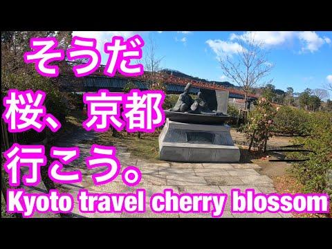 Kyoto TravelGuide Byodoin② Uji