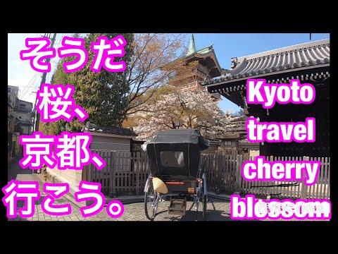 Kyoto TravelGuide MaruyamaPark③YasakaShrine KiyomizuTemple